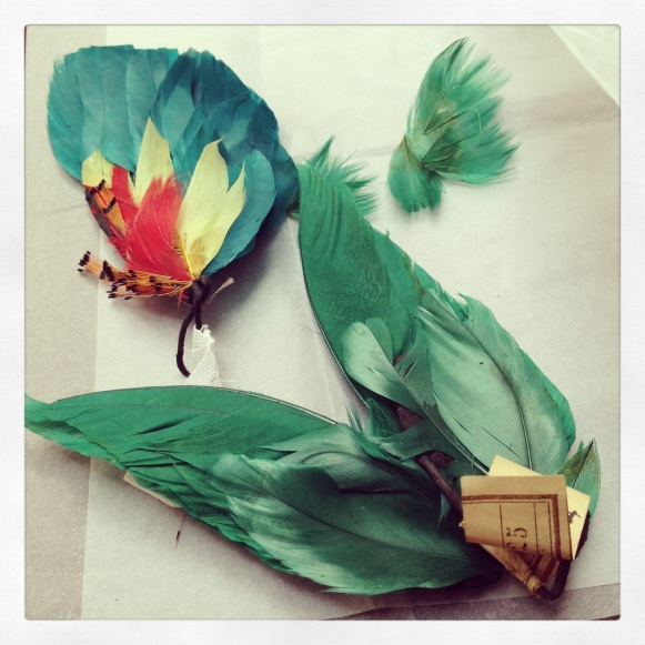 Feathers from the Hodson Shop Collection.